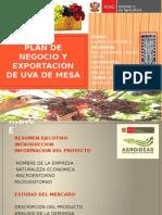 PLAN DE NEGOCIO Y EXPORTACION UVA DE MESA.pptx