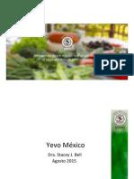 YEVO Espanol Spanish Presentation