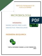 Aplicación de Tecnicas en La Ingenieria Bioquimica