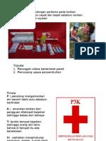 Materi Dokter Kecil p3k