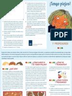 folleto-informativo_1