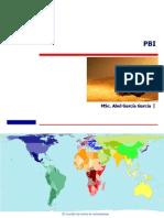 1 PBI.pdf