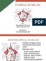 anatomi sirkulus willisi