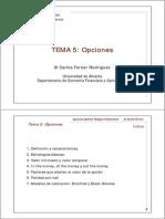 GRF Tema 5 Opciones Resuelto