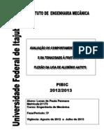 PIBIC - Lucas de Paula Pannace