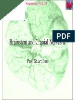 2217 Cranial Nerves Slides