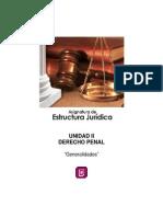 Derecho Penal resumen.pdf