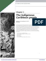 Amerindian Settlement