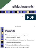 CH 3 structure et fonction des muscles(élève).ppt