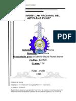Informe01. Alexander Flores Iberos