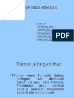 Tumor-tumor Mesenkim Dan Kulit2
