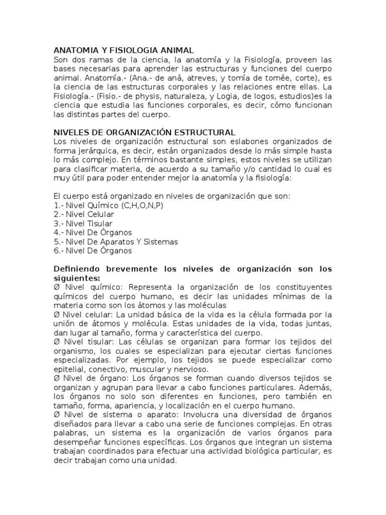 Bonito Anatomía Y Fisiología Prueba 1 Bosquejo - Anatomía de Las ...