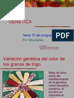15 Genética JA