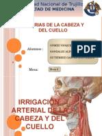 Arterias de Cabeza y Cuello