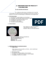 microbiología-informe (1)