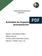 Actividad de Organizacion Quimica 2
