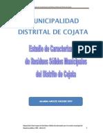 Estudio de Caracterización Cojata Final