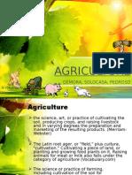 AGRICULTURE 2-2 Gemora Solocasa Pedroso