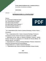 introduccion_patologia