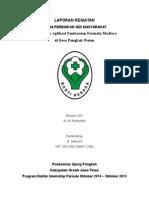 laporan internsip f4