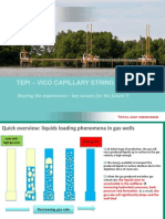 TEPI - VICO Capillary String Workshop