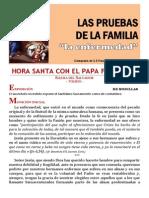 HORA SANTA CON EL PAPA. La Familia. Pruebas La Enfermedad (19)
