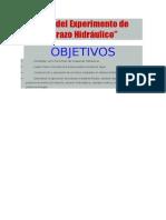 Informe del Experimento de Física.docx