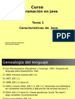 Programacion en Java 6 t01 Caracteristicas Java