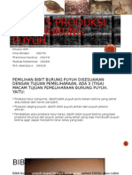 Proses Produksi Bibit Puyuh
