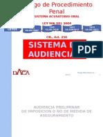 AUDIENCIA MEDIDA DE ASEGURAMIENTO.pptx