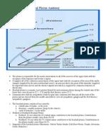 Chapter 8 - Brachial Plexus Anatomy