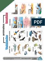 EsquemaAnimalesVertebradoseInvertebrados.PDF