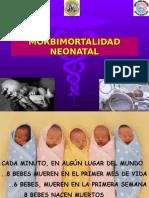 morbimortalidadneonatal.ppt NEO.ppt
