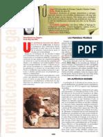 Mutilacion de Ganado R-006 Nº097 - Mas Alla de La Ciencia - Vicufo2