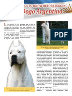 10 things to know before judging the dogo argentino