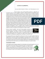 LA ERA DE LOS CARNIVOROS.docx
