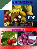 Fructe exotice