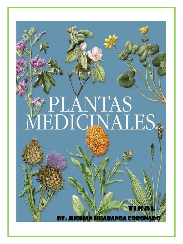 Lbum de plantas medicinales - Tipos de plantas de exterior ...