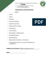 Formato 8 - Copia