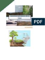 Clases de Regiones,Cuencas, Impacto Ambiental (2)
