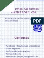 coliformes-2