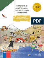VALORAS UC Segundo Ciclo Básico.