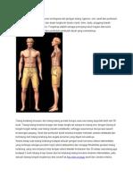 Anatomy Tulang Belakang