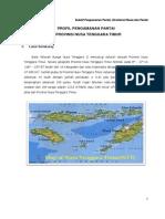 Profil Pengamanan Pantai NTT