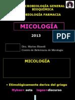 Clase Estructura Fungica