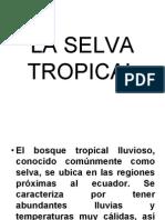 LA-SELVA-TROPICAL.pptx.pdf