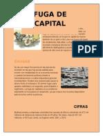 Fuga de Capital