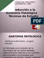 Teorico1 Introduccion Anatomia Patologica 1