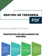 Propósitos de Mecanismos de Control - Chañi Cornelio, Elizabeth