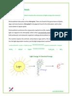 34920312-3-8-photosynthesis